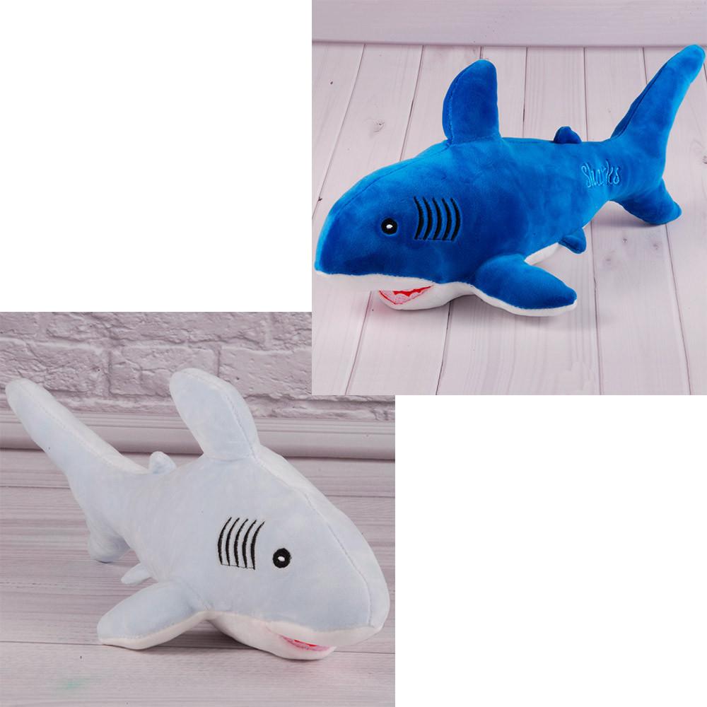 Акула 001/1 (Тьома)