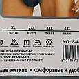 Труси чоловічі сірі розмір 50-52, фото 4