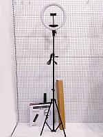 Кольцевая LED лампа AL-33 диаметром 33см, 1 крепление телефона + пульт 220V без штатива + подарок