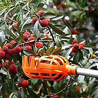 🔝Плодосъемник для сбора фруктов и ягод, плодосборник яблок и пр., оранжевый | 🎁%🚚, Сад, дача, огород