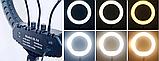 Профессиональная LED 46см кольцевая лампа YQ-460B ,штатив,3 держателя,пульт, кольцо свет, фото 2