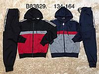 Спортивный костюм 2 в 1 для мальчика, Grace, 134,140,146 см,  № B83829