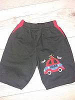 Дитячі шорти для хлопчиків на вік 1,2,3,4 років Туречина