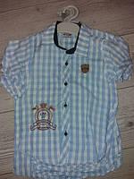 Сорочка для хлопчиків  у клітинку вік 6,7,8,9 років Туречина