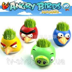 Травянчик керамический Angry Birds