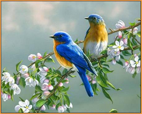 Картина за номерами Babylon Premium Пташки на яблуні 40*50 см арт.NB809R, фото 2
