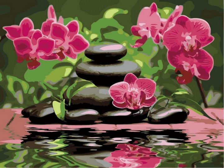 Картина за номерами Babylon Лілові орхідеї 30*40 см арт.VK014