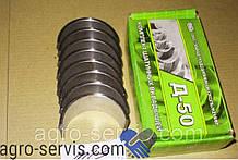 Вкладыш коренной Н1 Д-240 (Тамбов) Д50-1005100-БН1