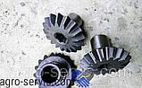 Шестерня коническая привода НМШ Т-150 151.37.483-2 трактора Т-150, фото 3