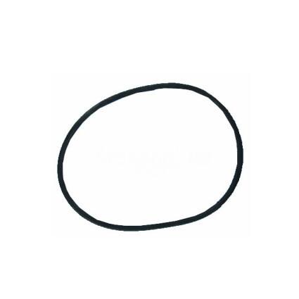 Hayward Прокладка-кольцо для крышки бочки фильтра BL BRASIL (RBK 030.A/500311000301/RCFI0003.01R)