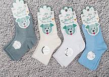 Шкарпетки дитячі бавовняні Aleyna розмір 1-3 років (від 12 шт)