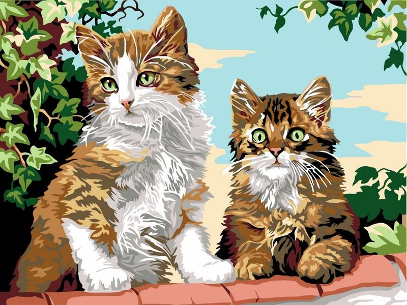 Картина за номерами Babylon Кошенята на паркані 30*40 см арт.VK114