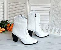 Белые кожаные казаки питон, фото 1