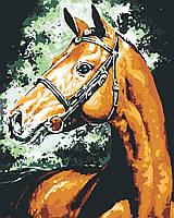 Картина по номерам Взгляд лошади (цветной холст) худ. Эмерико Имре Тот 40*50см Розпис по номерах
