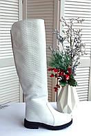 Белые ботфорты натуральная кожа принт питон, фото 1