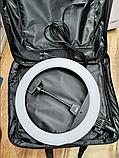 Кольцевая светодиодная лампа RING LIGHT ZB-R14 + сумка,с держателем телефона диаметром 35 см без штатива, фото 2