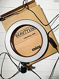 Кольцевая LED лампа диаметром 20см без крепления телефона, питание от usb без штатива, фото 2
