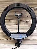 Кольцевое освещение для профессиональной съемки YQ320 с пультом, LED лампа диаметр 30 см без штатива, фото 2