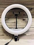Кольцевое освещение для профессиональной съемки YQ320 с пультом, LED лампа диаметр 30 см без штатива, фото 3