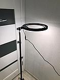 Кольцевое освещение для профессиональной съемки YQ320 с пультом, LED лампа диаметр 30 см без штатива, фото 5