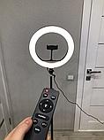 Кольцевое освещение для профессиональной съемки YQ320 с пультом, LED лампа диаметр 30 см без штатива, фото 6