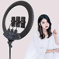 Профессиональная кольцевая LED лампа SLP-G63 с 3 держателями, пультом, диаметр 55 см без штатива, фото 1