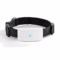 GPS трекер, ошейник  для собак TKSTAR tk911