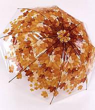 Женский прозрачный зонт  трость осенние листья