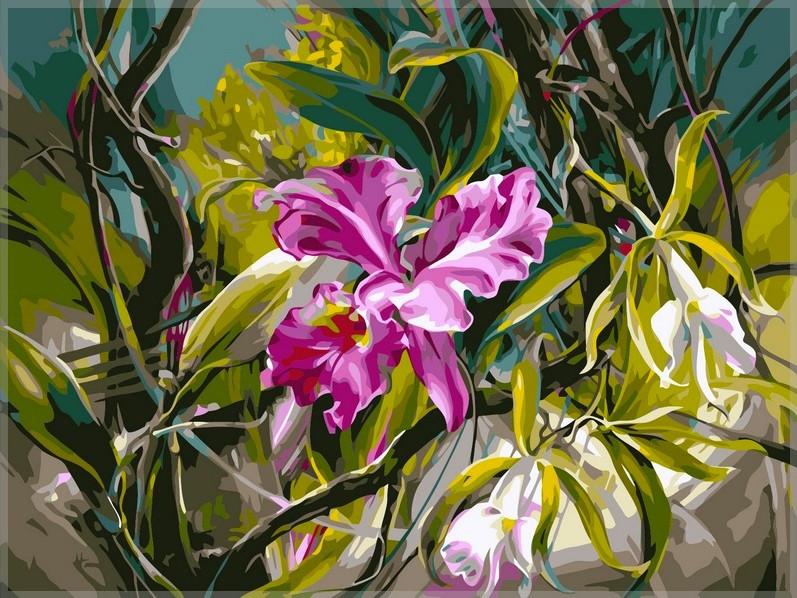 Картина за номерами Babylon Прекрасні орхідеї 40*50 см арт.VP101