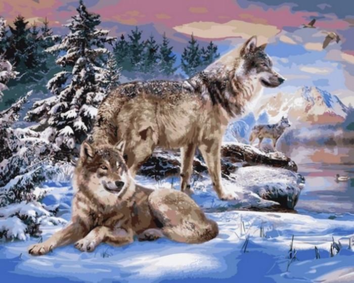 Картина по номерам Babylon Волки на берегу реки 40*50 см (в коробке) арт.VP1024