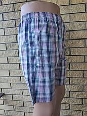 Шорты коттоновые унисекс, пояс на резинке, со шнуровкой, (есть большие размеры) NN, фото 3