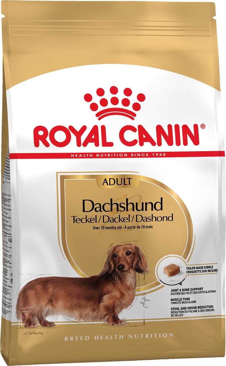 Royal Canin DACHSHUND ADULT 1,5кг - КОРМ ДЛЯ ВЗРОСЛЫХ СОБАК ПОРОДЫ ТАКСА В ВОЗРАСТЕ ОТ 10 МЕСЯЦЕВ