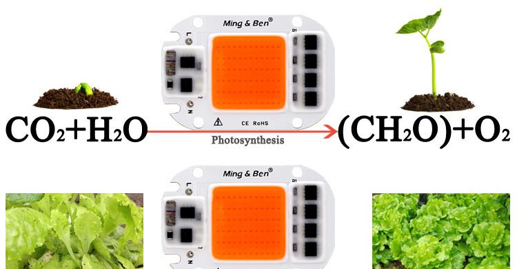 Фито Светодиод 60 W 144 кристалла Smart IC 60W полный фитоспектр фито для растений №503