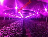 Фито Светодиод 60 W 144 кристалла Smart IC 60W полный фитоспектр фито для растений №503, фото 7