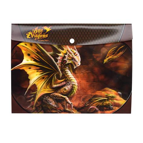 Папка 18515 дракон, фото 2
