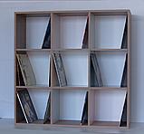 Модуль М2b для виниловых пластинок, фото 3