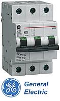 """Автоматический выключатель GЕ G63C03 ТМ """"General Electric"""" (Венгрия)"""