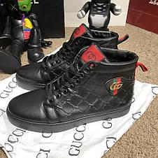 Gucci Signature Web High Top Black/Blue/Red, фото 3