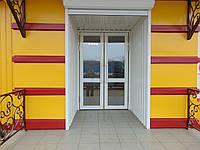 Двері маятникові (скло) 95х220см