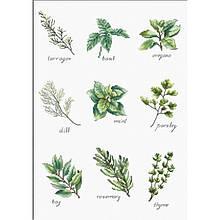 Наборы для вышивания крестом Luca S специи и травы