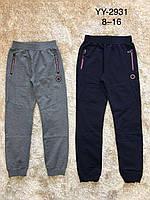 Спортивные штаны для мальчиков оптом, F&D, 8-16 лет,  № YY-2931