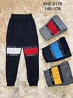 Спортивные штаны для мальчиков оптом, Active Sports, 146-176 см,  № XHZ-0170