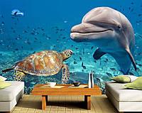 """Фото Обои """"Дельфин и черепаха"""""""