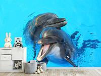 "Фото Обои ""Два Дельфина"""