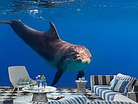 """Фото Обои """"Дельфин в синем море"""", фото 1"""