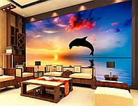 """Фото Обои """"Дельфин на рассвете 1"""", фото 1"""