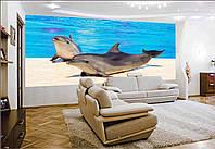 """Фото Обои """"Дельфины на мостике"""""""
