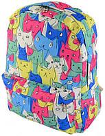 Молодежный рюкзак TRAUM 7224-14