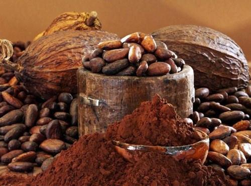 Какао продукт