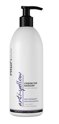 Бальзам для волос Серебристый ProfiStyle (для окрашеных волос:питание, увлажнение) 500мл (Viki), фото 2